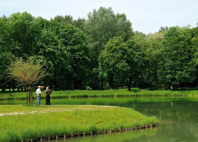 Zdjęcie stawu przy, którym stoją ludzie a w oddali rosną drzewa