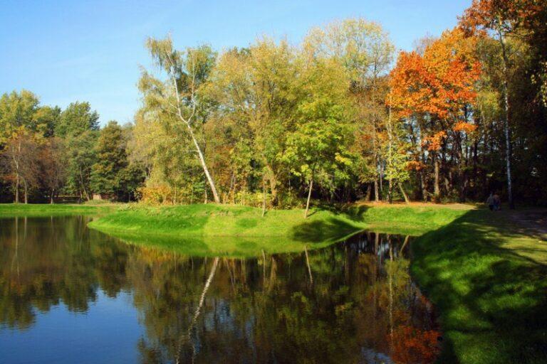 Zdjęcie stawu przy, którym rosną kolorowe drzewa
